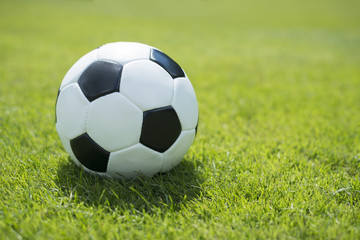 Classic soccer ball on fresh green lawn