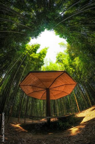 In de dag Bamboo A small bamboo bench