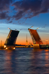 Bridges of St. Petersburg