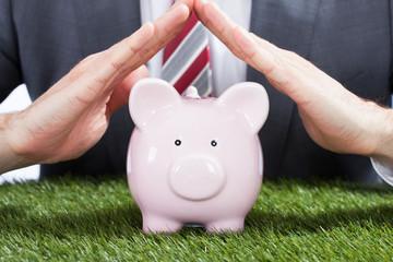 Businessman Sheltering Piggybank On Grass