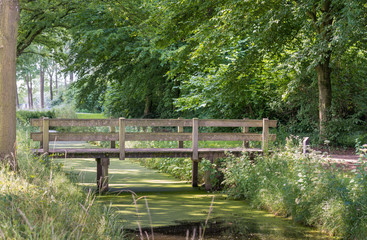 Small wooden bridge in a park