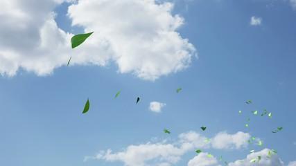青空と風で飛ぶ葉っぱ