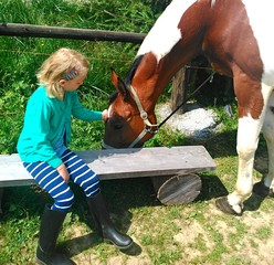 A little girl and horse