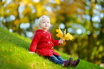 Adorable toddler girl portrait on autumn day