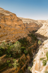Canyon Wadi Kelt