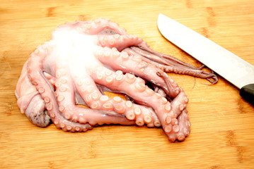 Slicing Raw Octopus for a Gourmet Dinner