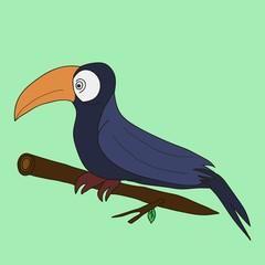 Toucan bird sitting on a branch