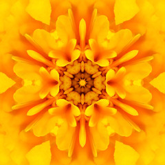 Yellow Mandala Concentric Flower Center Kaleidoscope