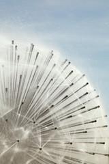fontaine de jets d'eau en forme de sphère