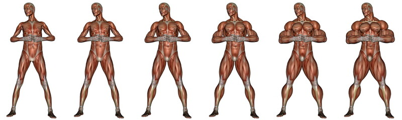 Becoming a muscular man - 3D render