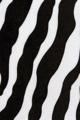 texture of zebra stripes