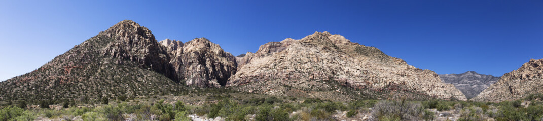 Red Rock Canyons Panorama