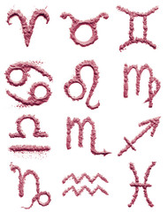 zodiac signs of blush