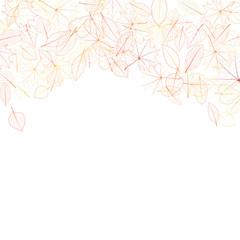 Autumn leaves on white background. plus EPS10
