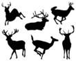 Black silhouette of deers, vector