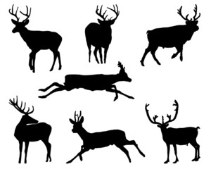 Black silhouettes of deers, vector