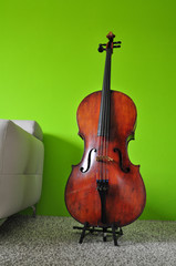 cello violoncello, musical instrument