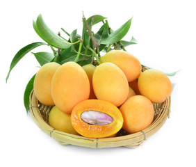 Sweet Marian plum fruit in basket on white background(Mayongch i