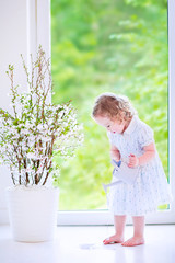 Beautiful girl watering flowers at home
