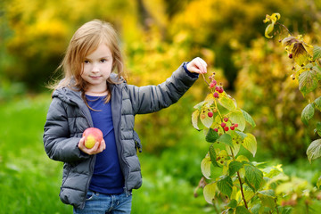 Cute little preschooler girl picking raspberries