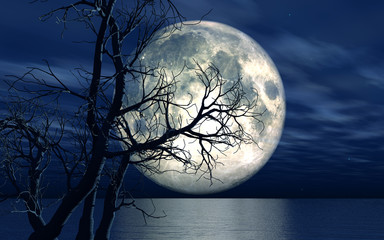 3D landscape background with moon and tree © Kirsty Pargeter