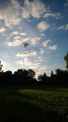 Drache fliegt am Himmel