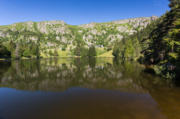Lac et forêt en montagne