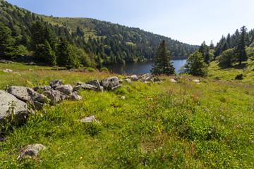 Vue vers le lac en montagne