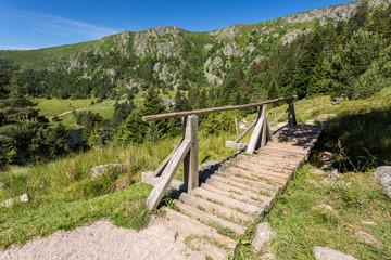 Ponton sur le sentier en montagne