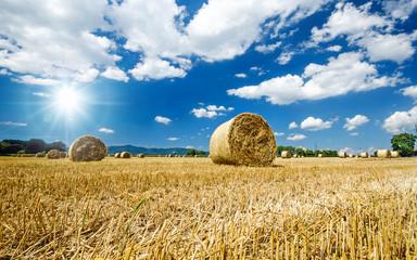 Erntezeit in der Pfalz: Stoppelfeld mit Strohballen :)