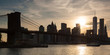 Panoramic view of lower Manhattan and Brooklyn bridge in New Yor