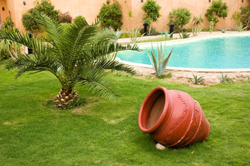 Lawn with palm and red pot near pool