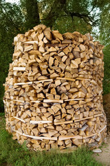 Big round stack of wood