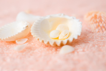 bright seashells on soft pink terry texture, closeup