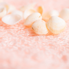 light sea shells on soft pink terry texture, closeup