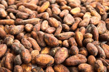 Kakaobohnen-Hintergrund