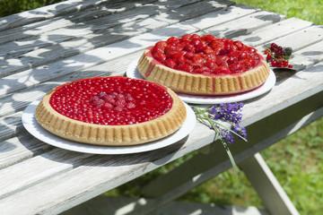 Zwei Obstkuchen auf Gartentisch