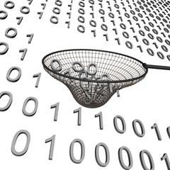 Vissen naar gegevens