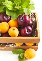 Fresh apricots and plums in wooden box