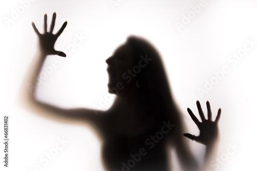 Zdjęcia na płótnie, fototapety, obrazy : Woman silhouette