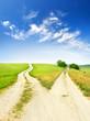 Cross roads - 66832298
