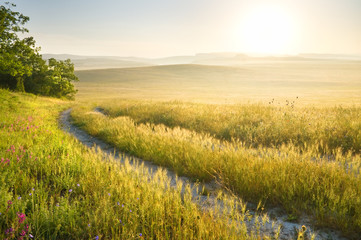 Lane in meadow and sunrise.