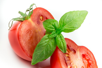 Tomato and basil leaf isolated