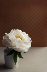 Peony flower in a small vase, dark background