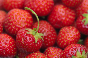 strawberry summer fruit