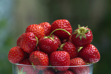 bowl of strawberries in summer garden