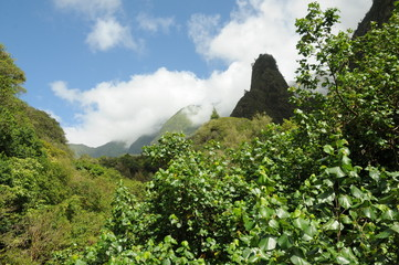 Iao neddle