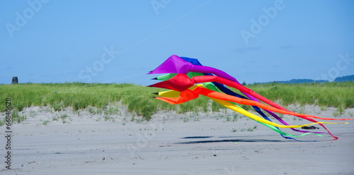 Giant kite takes off in Long Beach