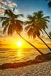 Leinwandbild Motiv Barbados