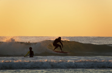 Gold Coast surfer